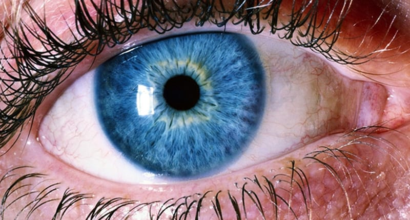 retinal detachment adult pediatric eyecare local eye doctor near you